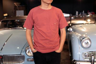 BASIC T-shirts PIGMENT [ Nigel Cabourn ]